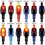 Harta emoțiilor umane