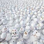 12 oameni de zăpadă