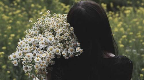 Urme de flori