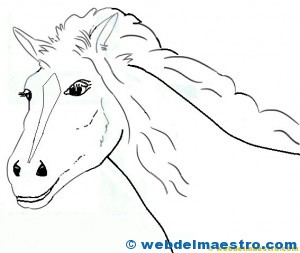 caballos-para-colorear-cabeza