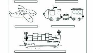Los transportes | primaria