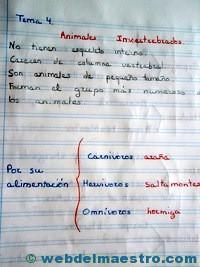 Animales invertebrados cuaderno alumnos-1