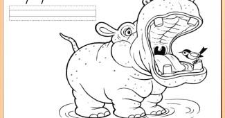 Fichas de animales-1