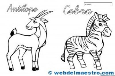 Animales para colorear-2
