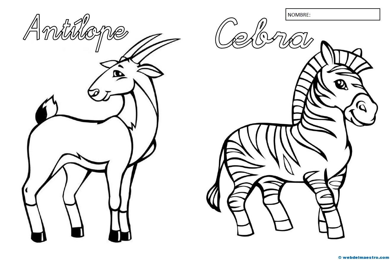 Animales para colorear (II) - Web del maestro