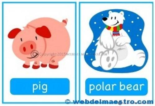 Animales en inglés-4
