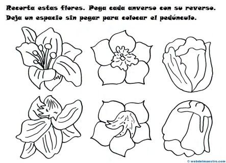 Flores de papel-1-