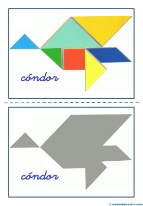 Cóndor