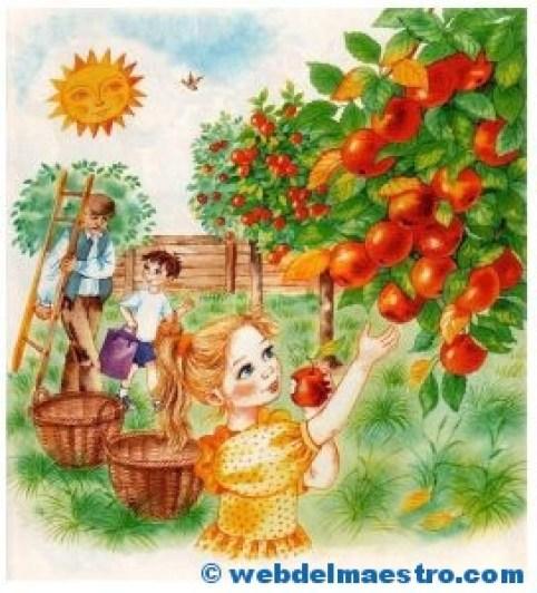 verano-recoleccion-de-frutas