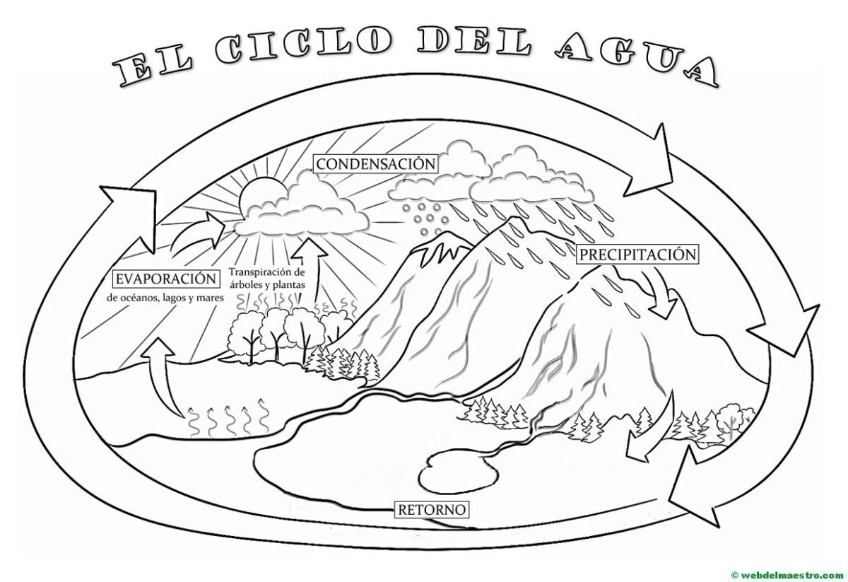 El ciclo del agua (Primaria)