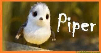 Cuentos infantiles cortos-Piper