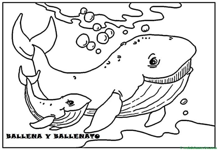Ballena y ballenato
