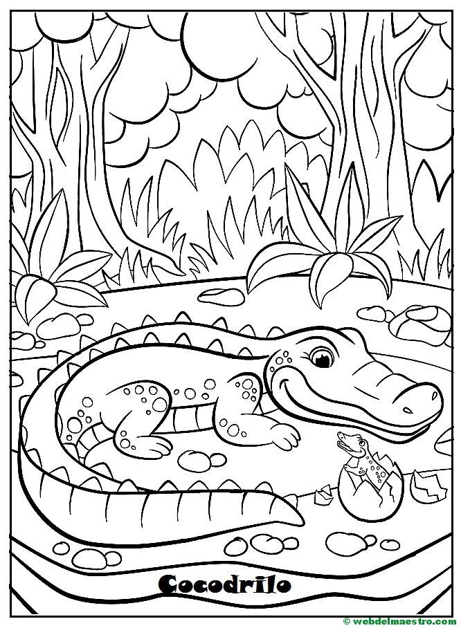 Dibujos para pintar | Animales y sus crías - Web del maestro