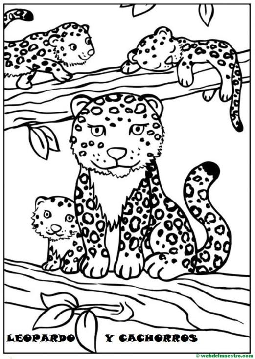 leopardo y cachorros