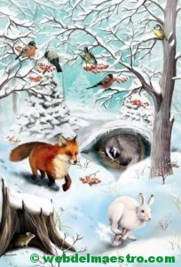 Animales de las montañas