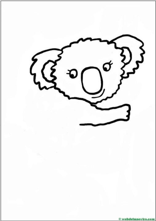 Como dibujar un koala- paso 5