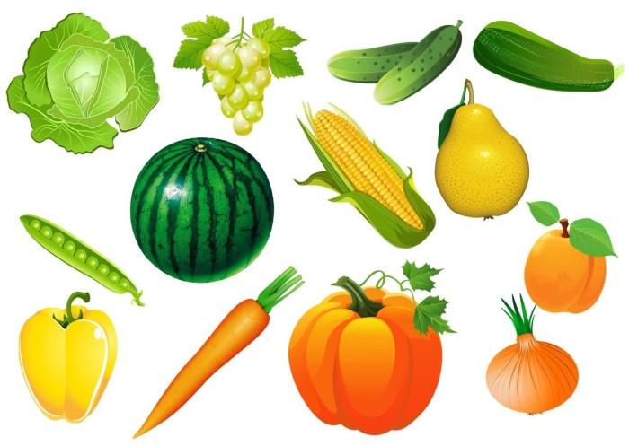 dibujos-frutas-hortalizas y verduras