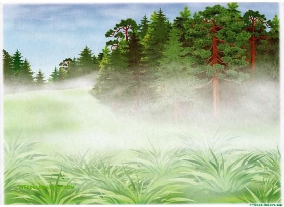 Niebla-