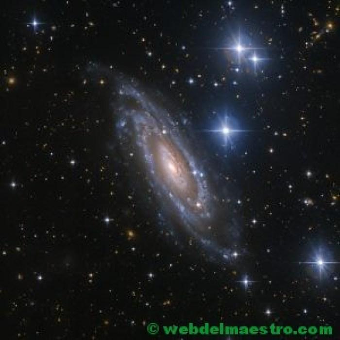Estrellas y galaxia espiral en la constelación de Lepus