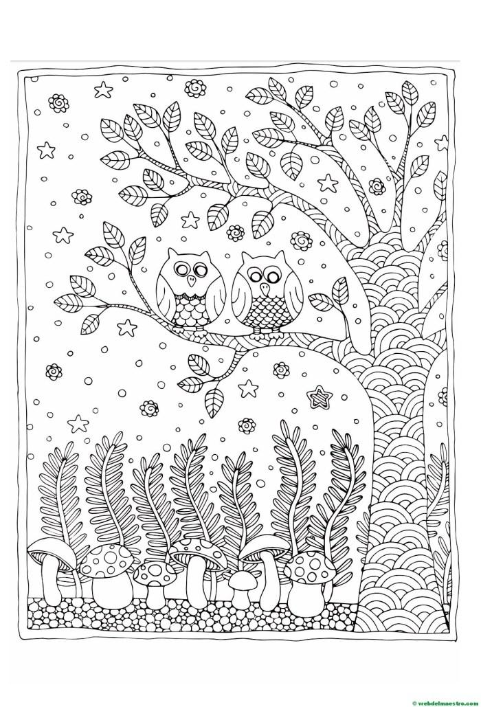 dibujos antiestrés-Búhos
