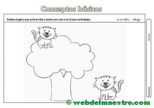Actividades con conceptos basicos-Arriba-abajo