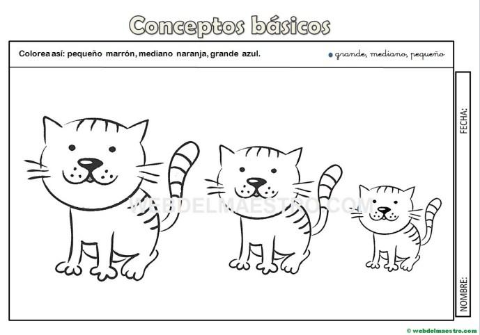 Conceptos básicos: imágenes y actividades - Web del maestro