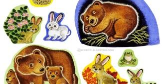 Animales de las estaciones del año-primavera y oso ivernando