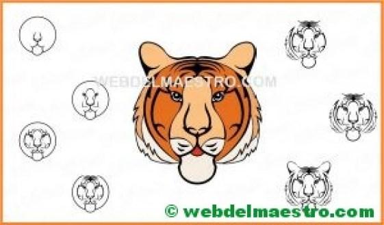 como dibujar la cabeza de un tigre-