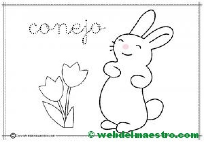 5-conejo