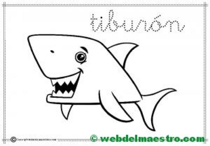 9-tiburón