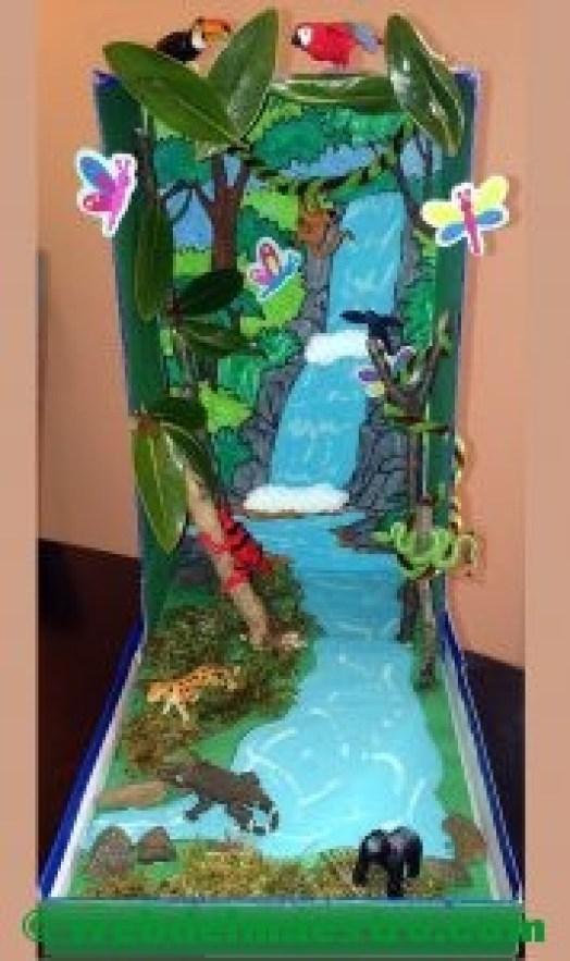 Ecosistema-la selva-
