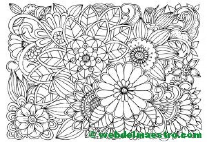 Dibujo de flores para colorear 2