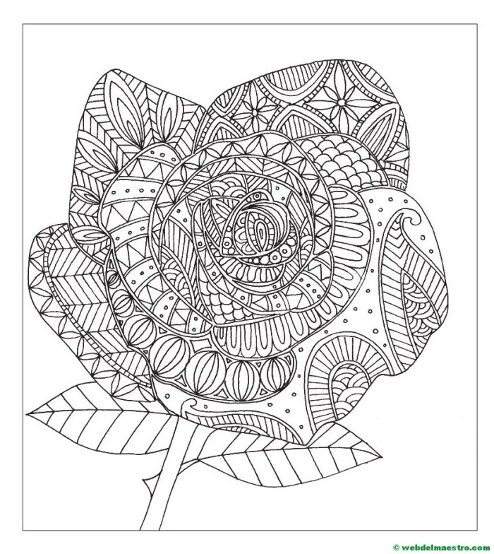 dibujo de flores-rosa-1