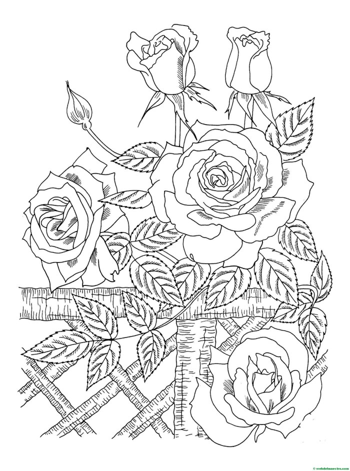 flores dibujo