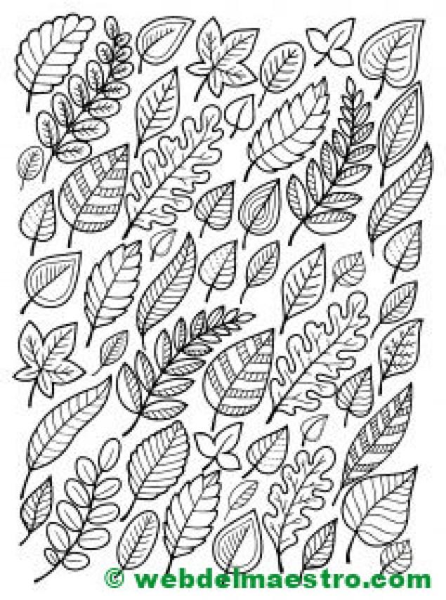 hojas otoño colorear