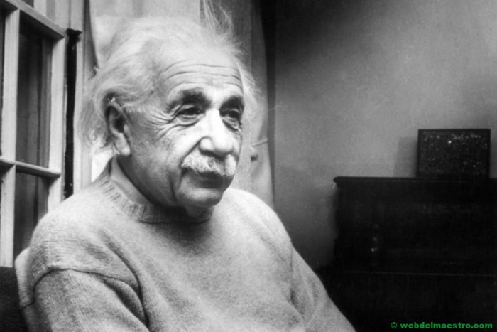 Albert Einstein adulto