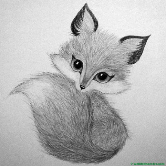dibujo a lápiz de un zorro