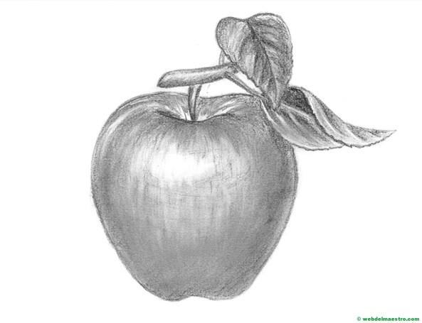manzana dibujada a lápiz