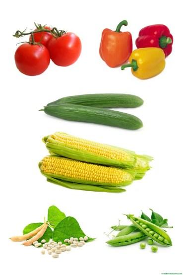 hortalizas - 2