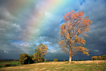 Add A Realistic Rainbow To A Photo In Photoshop