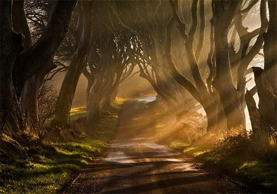30 Magical Ex&les of Natural Light Photography & 30 Magical Examples of Natural Light Photography - Web Design Ledger azcodes.com