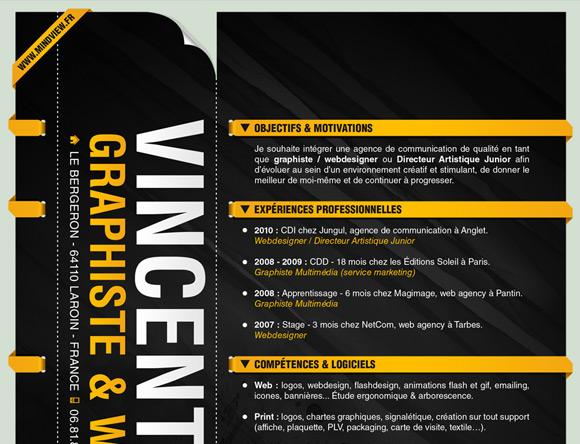 Mindview Resume