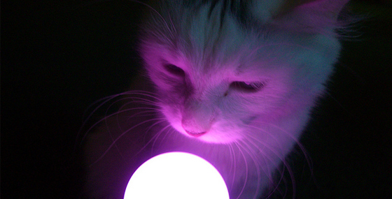 Playstation3 Move Controller - Light up the cat