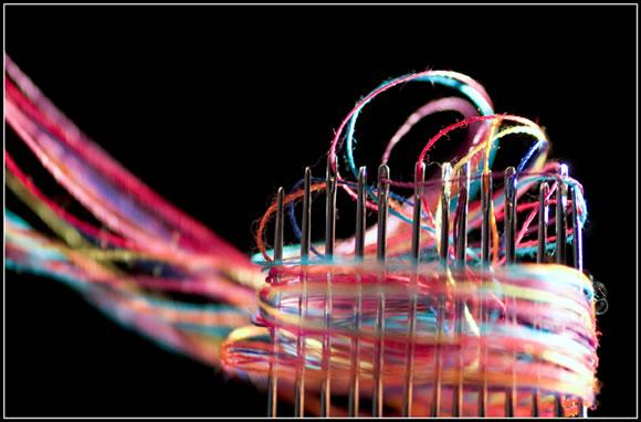 macro11 25 Geniales ejemplos de fotografía Macro