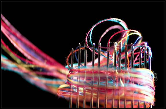 25 Inpiring Examples of Macro Photography