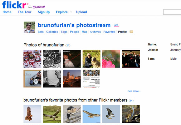 User profile designs for Flickr
