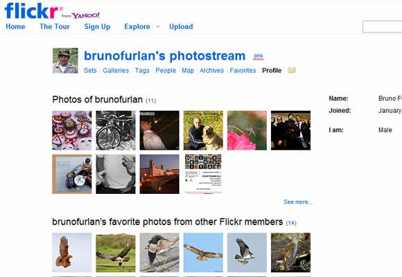 User profile designs for Flickr