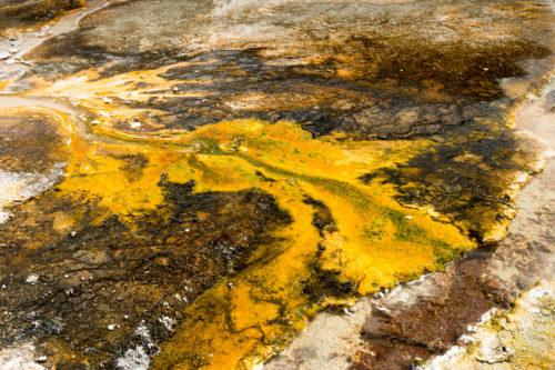 Deposits around a thermal spring. Orakei Korako geothermal area on the Northern Island , New Zealand, near Rotorua,
