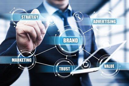 branding and social media services webdesign vero