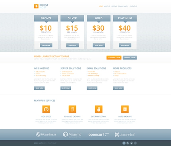 Boost Your Hosting Responsive Website Template